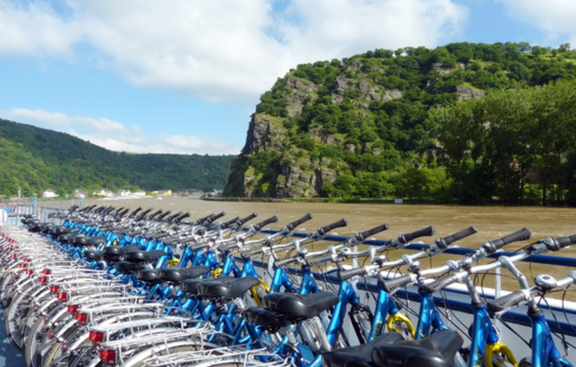 Boat and bike tour: The Rhine and Neckar river cruise